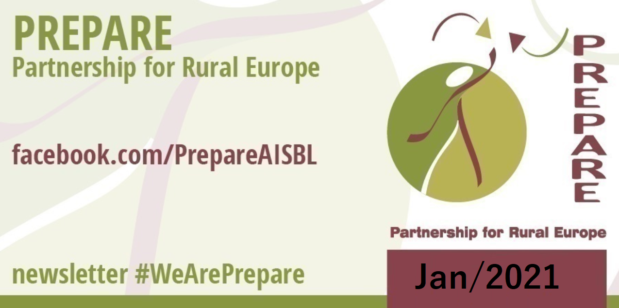 Newsletter #WeArePrepare (Jan 2021)
